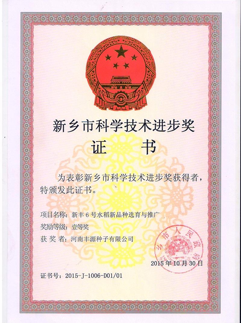 公司新丰6号市进步奖证书
