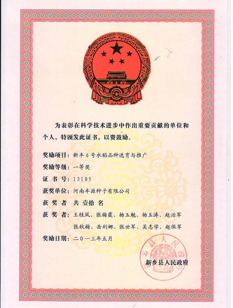 新丰6号县进步奖